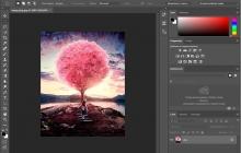 Каталог программ для редактирования фото