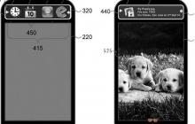 Samsung сделает чехлы с экранами для смартфонов