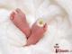 Минтруд предлагает дарить подарки матерям новорожденных в рамках Десятилетия детства