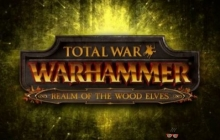 Новое дополнение для Total War: Warhammer выйдет 8 декабря