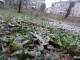 МЧС предупреждает о перемене погоды. Ожидается мокрый снег, гололед и порывы ветра