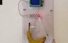 Пароли от Wi-Fi можно раздавать посредством банана