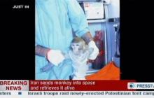 Иран послал в космос обезьяну
