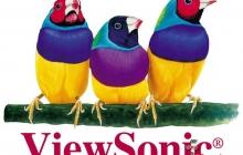 ViewSonic предлагает угадать чемпиона мира по футболу
