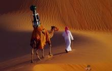 Google нанял на работу верблюда