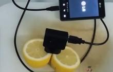 Как зарядить мобильный с помощью обыкновенного лимона