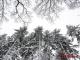 Варварины морозы: не сегодня — в Новый год