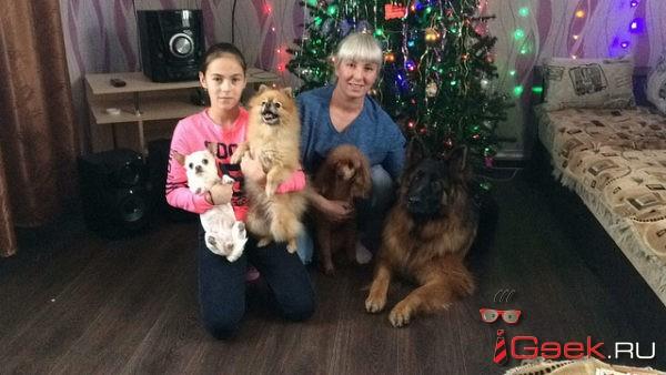 Для карпинской семьи Павлович год Собаки — особенный. Эти животные для них – не просто домашние питомцы