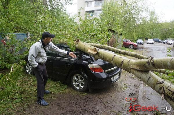 Автомобилист отсудил у серовского детского сада компенсацию за упавший на Opel Astra тополь