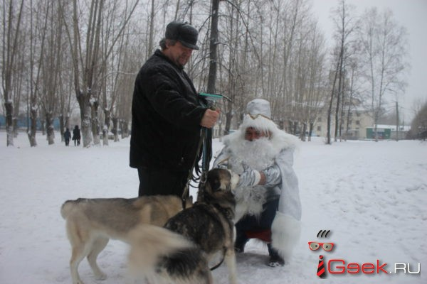 Дед Мороз из «Глобуса» дарил серовчанам праздничное настроение