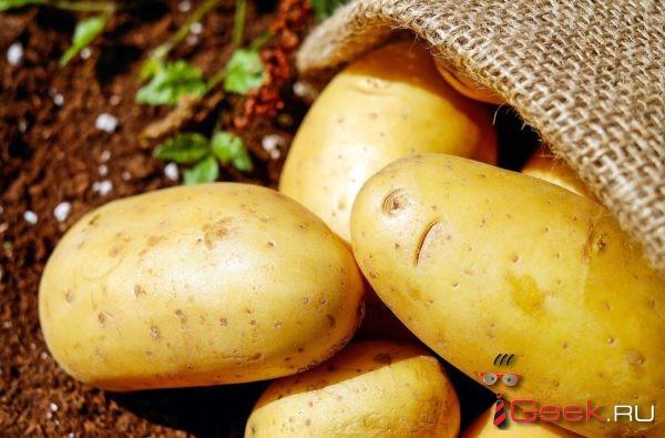 Картофель подорожал больше других социально значимых продуктов в 2017 году