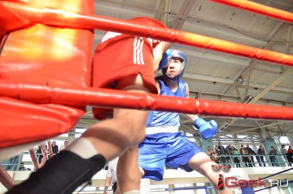 Жителей Серова приглашают на открытую тренировку и мастер-класс боксеров-профессионалов