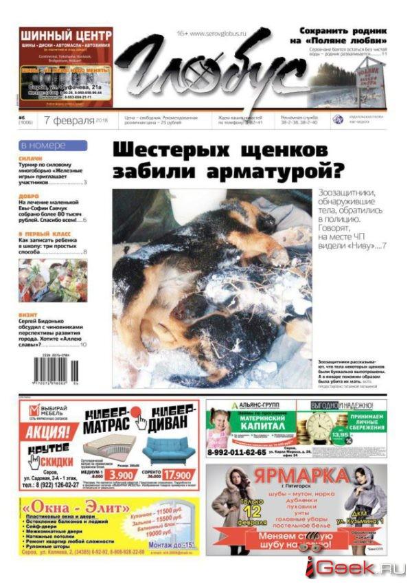 Свежий номер «Глобуса»: жестокая расправа над щенками, визит депутата Госдумы и школьные хлопоты