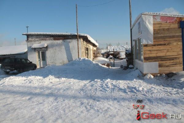 В Серове планируется построить приют для бездомных животных на 30 вольеров