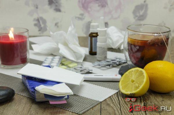 В Серовском горокруге за неделю ОРВИ заболели больше 500 человек. Специалисты прогнозируют спад заболеваемости