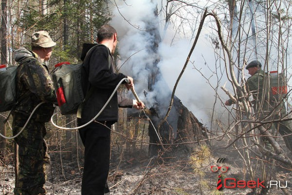 Сегодня в лесах Серовского городского округа вводится особый противопожарный режим. До 14 мая — никаких шашлыков