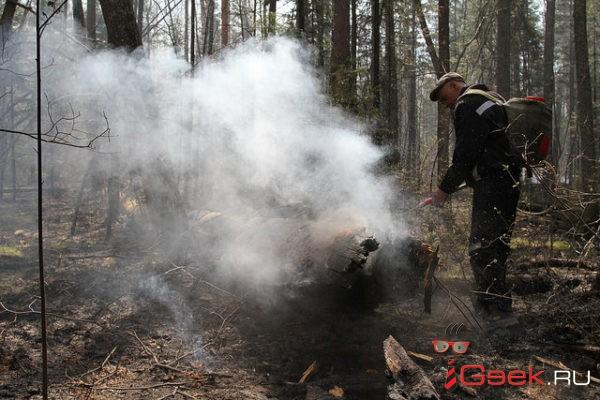 В майские праздники специалисты Серовского лесничества будут искать нарушителей правил противопожарной безопасности
