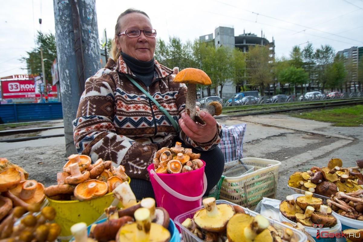 Тепло, дождливо и куча грибов: приметы и ученые предсказали Уралу интересное лето