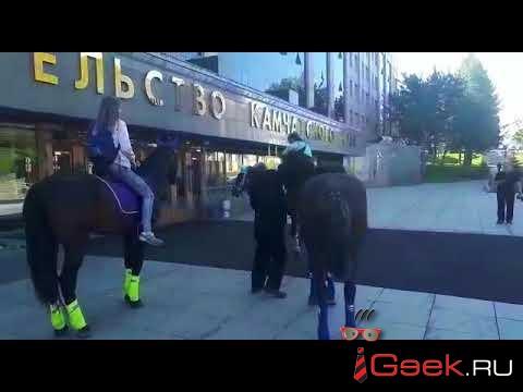 На Камчатке будут судить депутата (!), который приехал на работу на коне (!!) в знак протеста (!!!). ВИДЕО