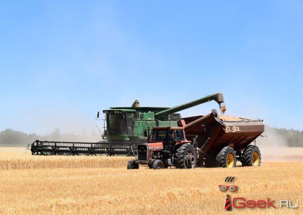 Россия направит излишки урожая в нуждающиеся страны