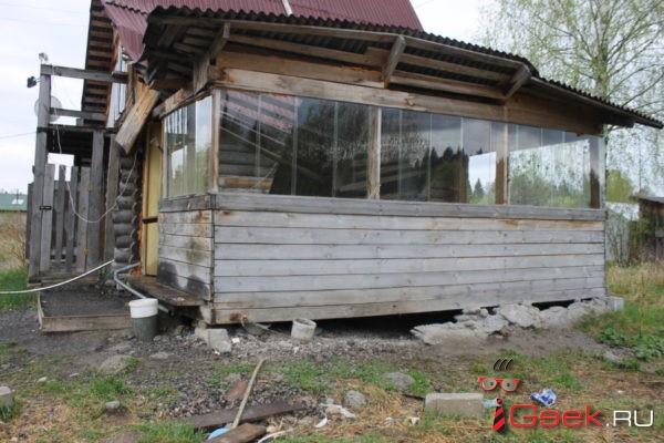 Три года на цепи в заброшенном доме… Серовчан просят помочь брошенной собаке Джесси
